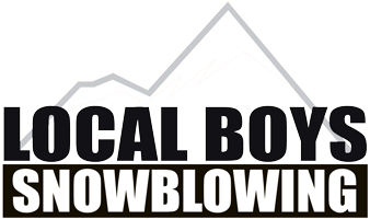 Local Boys Snowblowing